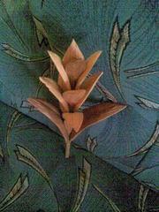 коллекция цветов из дерева