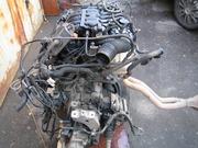 Двигатель на Audi A3 1.6 AKL BFQ AVU AEE