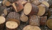 Дрова сосна колотые,  чурки 4100 грн/Зил с доставкой Кременчуг и обл.